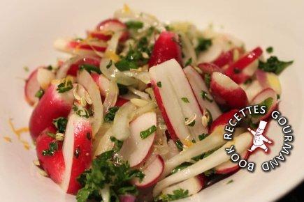 salade,radis,fenouil,pamplemousse,entrée
